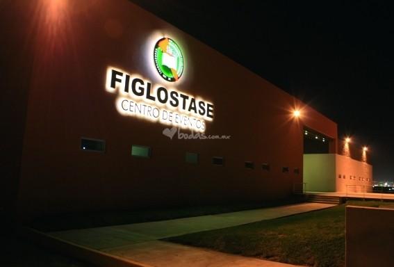 TlaquepArte Culiacán Junio 2016